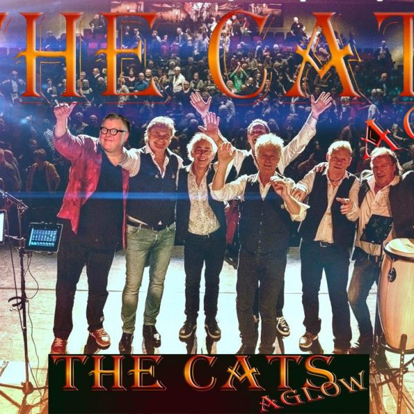 "Concert ""The Cats Aglow"" niet op 1 november"